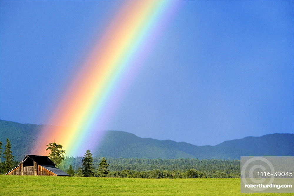 Agriculture - A rainbow appears to emanate from an old weathered barn / near Whitefish, Montana, USA.