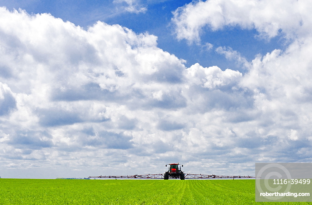 A high clearance sprayer applies herbicide to early growth wheat, near Dugald, Manitoba, Canada