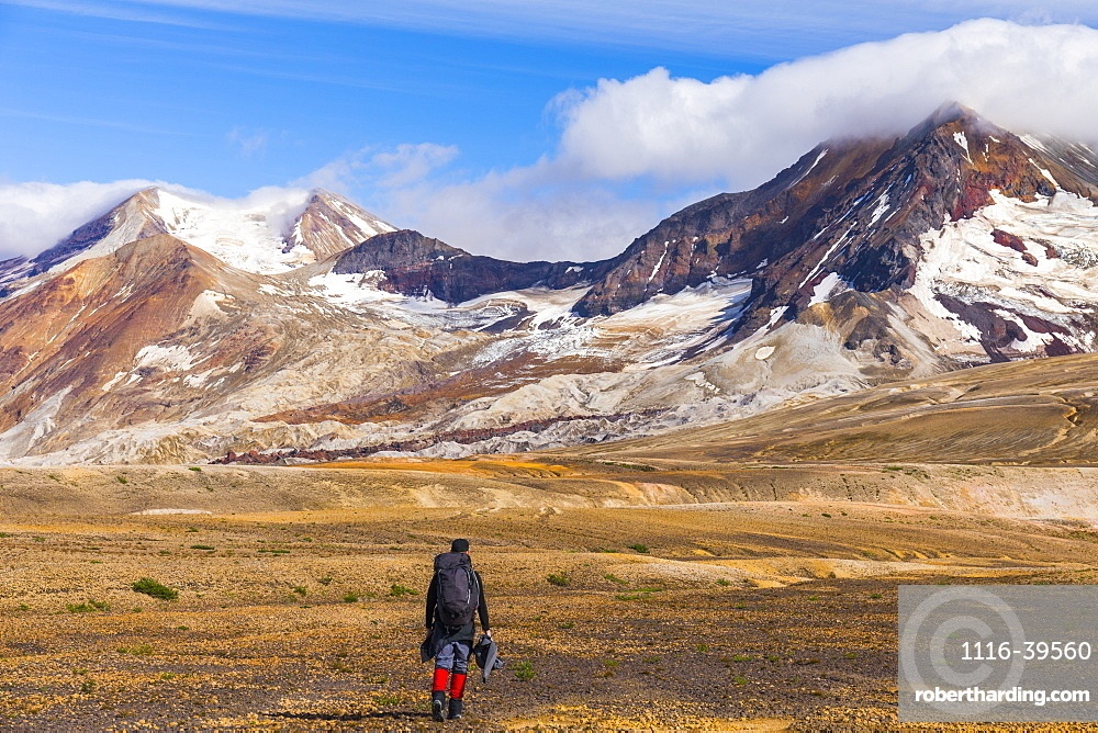 A backpacker crosses the exotic landscape of the ash and pumice-covered Valley of Ten Thousand Smokes in Katmai National Park, with Mt. Katmai (left), Trident Volcano (right), and the Knife Creek Glaciers looming in the distance; Alaska, United States of