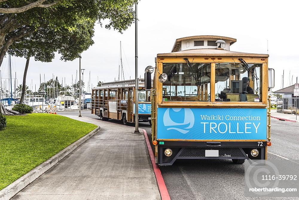 Waikiki trolleys waiting for passengers on Holomoana Street near the Ala Wai boat harbor (in background) in Waikiki, Honolulu, Oahu, Hawaii, United States of America