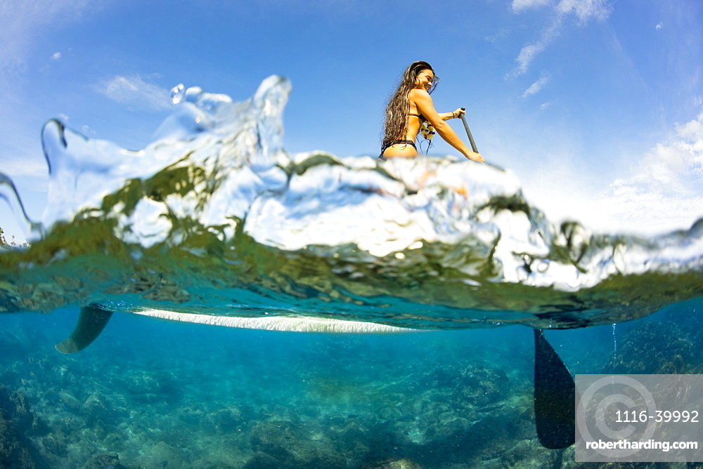 Split image of above and below water and a woman on a stand up paddle board, Hawaii, United States of America