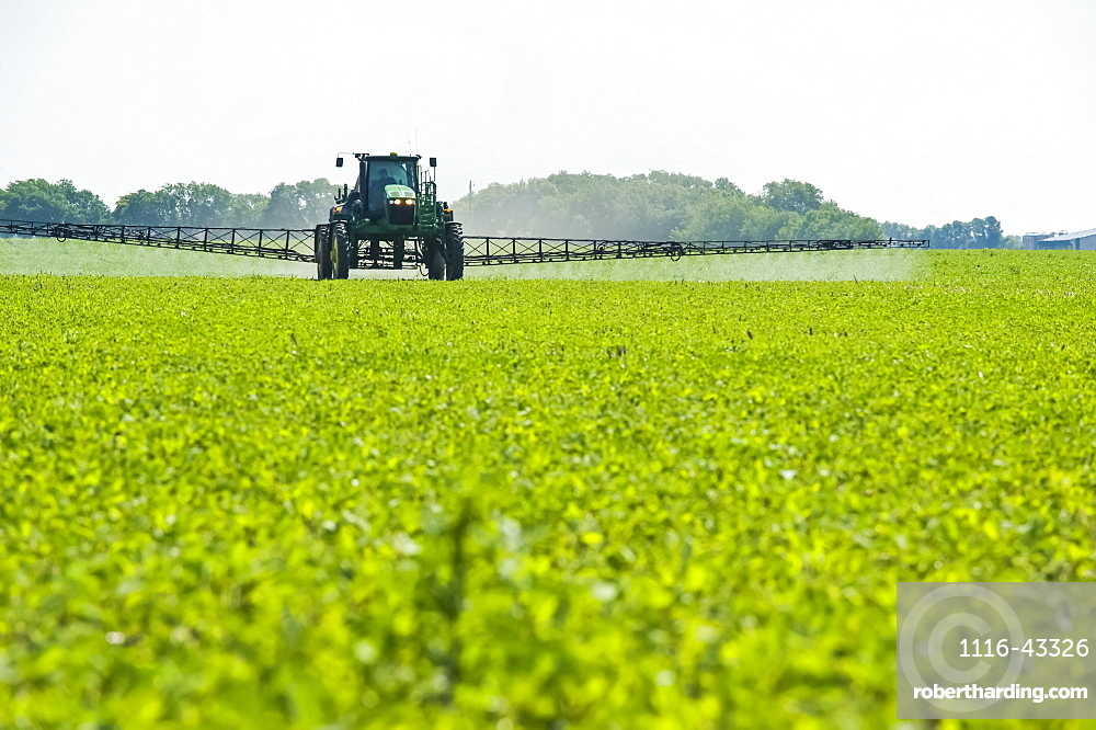 A high clearance sprayer gives a ground chemical application of herbicide to early growth soybeans, near Niverville, Manitoba, Canada