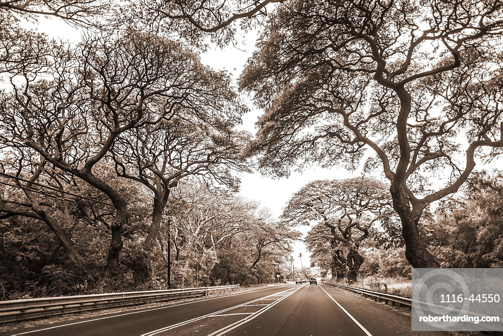 Road enroute to Kaplua from Kihei on the island of Maui, Maui, Hawaii, United States of America