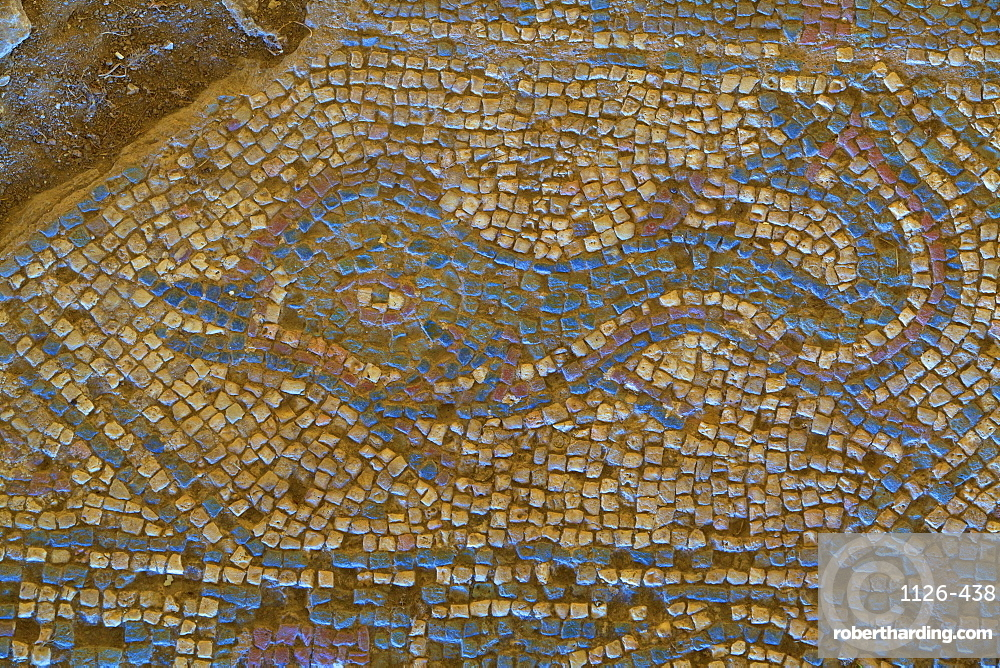 Mosaic of dolphin from Temple to Athena, Soloi, North Cyprus, Cyprus, Europe