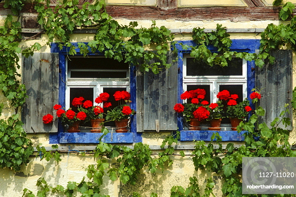 Windows with Geranium in flower boxes, open-air museum, Bad Windsheim, Bavaria, Germany
