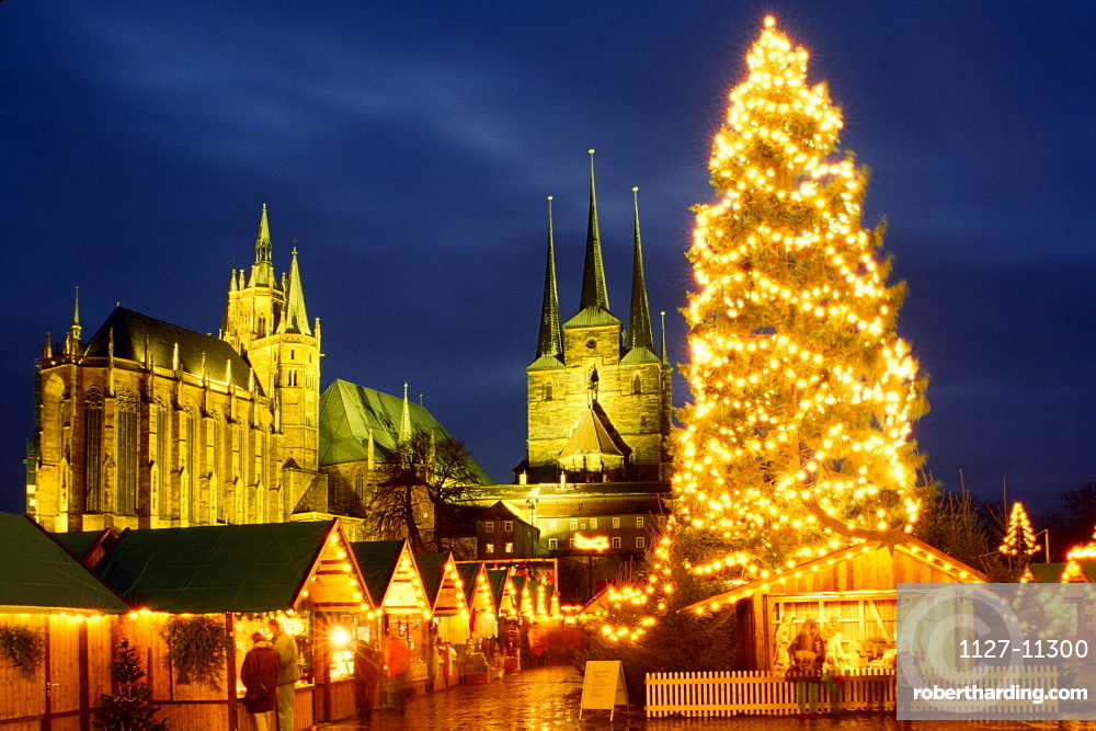 Christmas fair in front of cathedral St. Marien and St. Severin church in the evening, Erfurt, Thuringia, Germany / Christmas tree