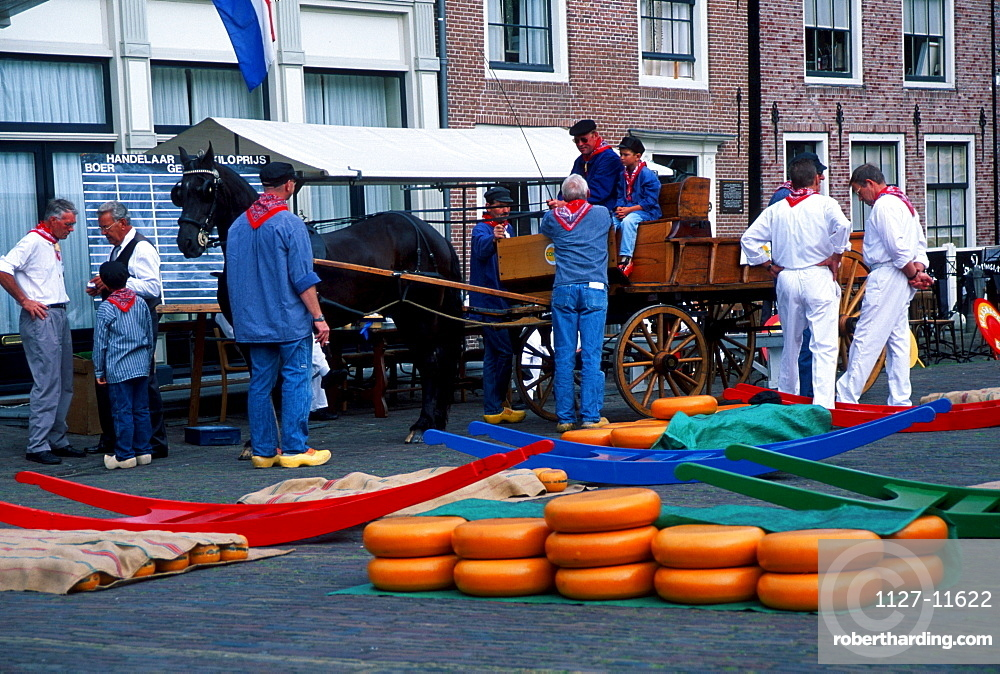 Men with horse coach on cheese market, Edam, Netherlands