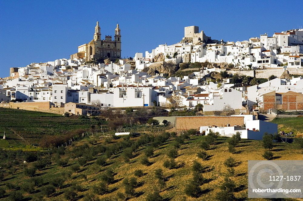 Olvera with church Encarnacion and moorish castle, white villages, Pueblos Blancos, Andalusia, Spain