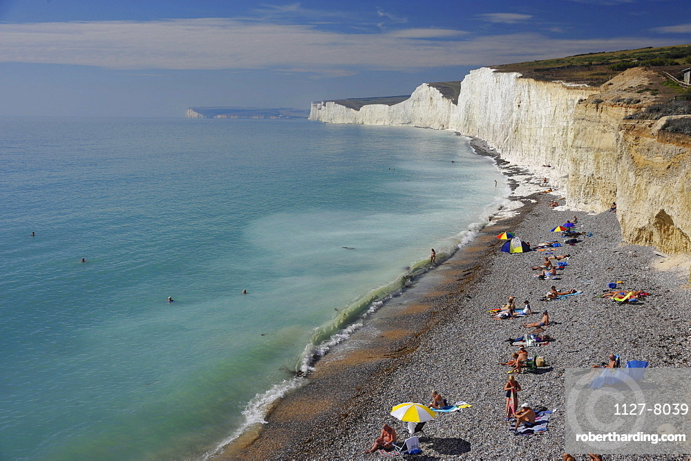 Beach and chalk cliff coast, Seaford, East Sussex, England / White Cliffs