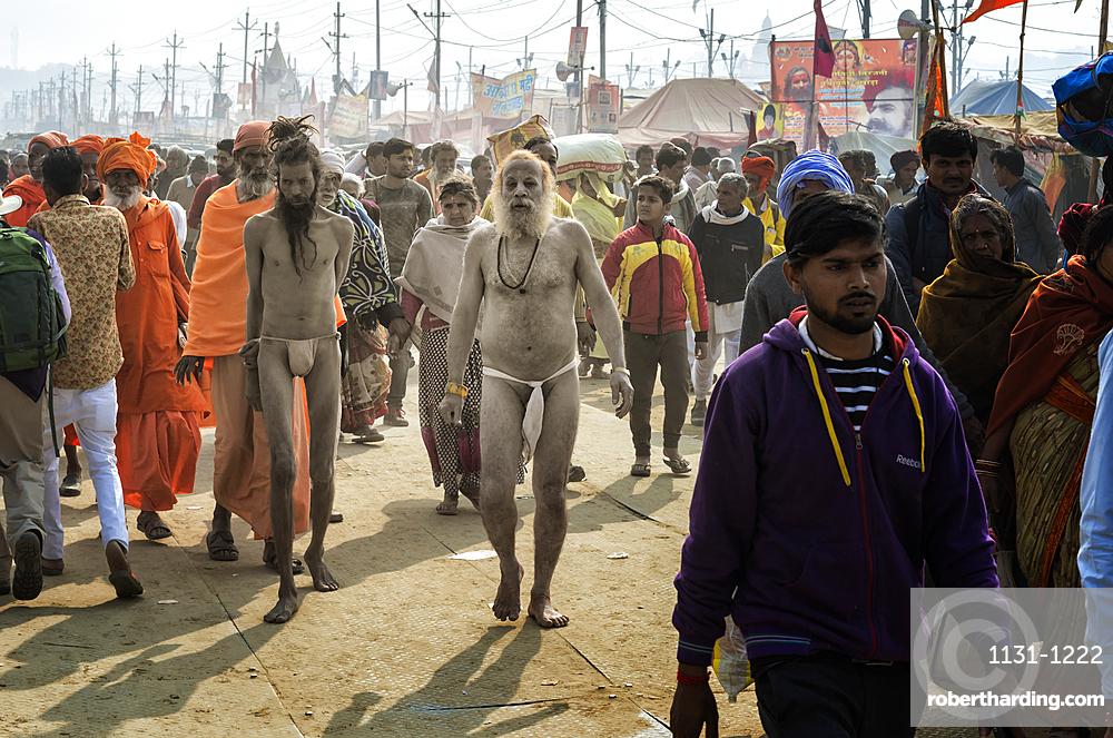 Sadhus walking between pilgrims, Allahabad Kumbh Mela, World's largest religious gathering, Allahabad, Uttar Pradesh, India, Asia