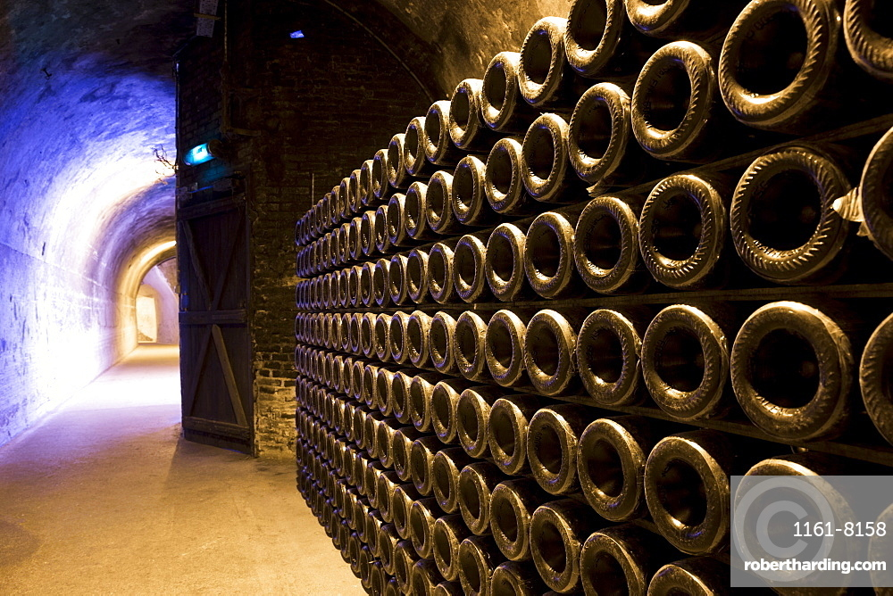Methuselah bottles stacked and ageing in caves of Champagne Taittinger  in Reims, Champagne-Ardenne, France, Europe