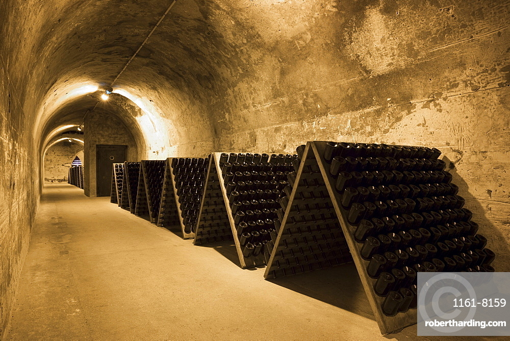 Methuselah bottles of champagne in frames for remuage (turning) in caves of Champagne Taittinger in Reims, Champagne-Ardenne, France, Europe