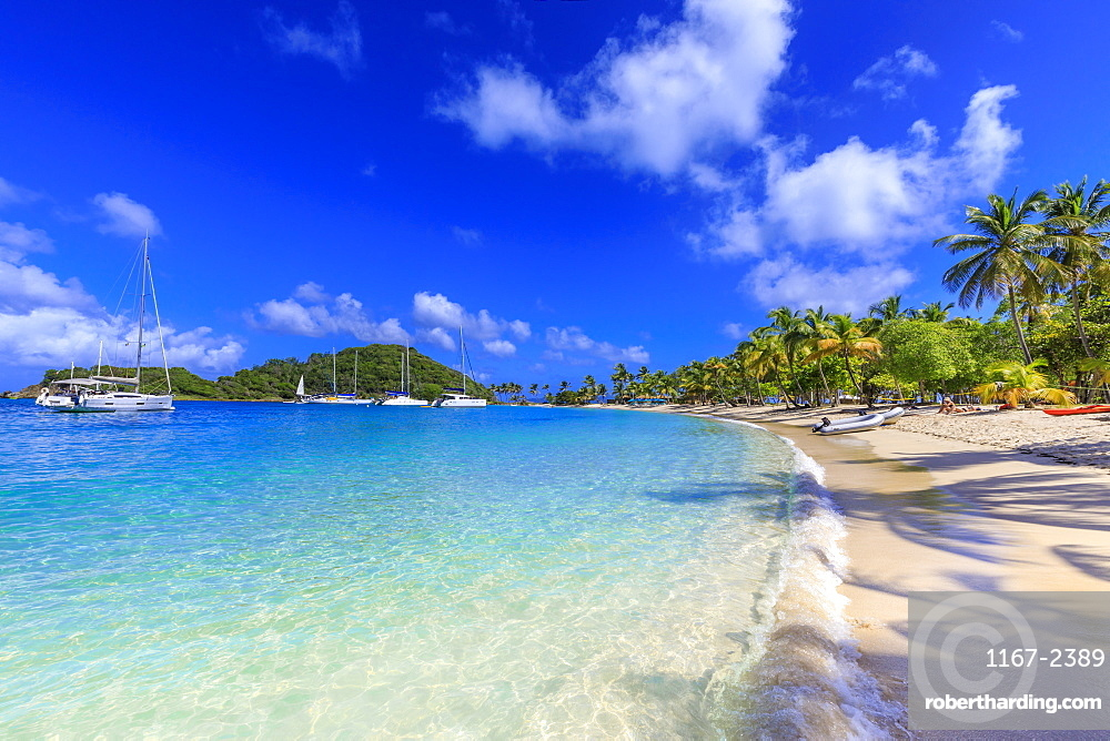 Saltwhistle Bay, white sand beach, turquoise sea, yachts, palm trees, Mayreau, Grenadines, St. Vincent and The Grenadines, Windward Islands, West Indies, Caribbean, Central America