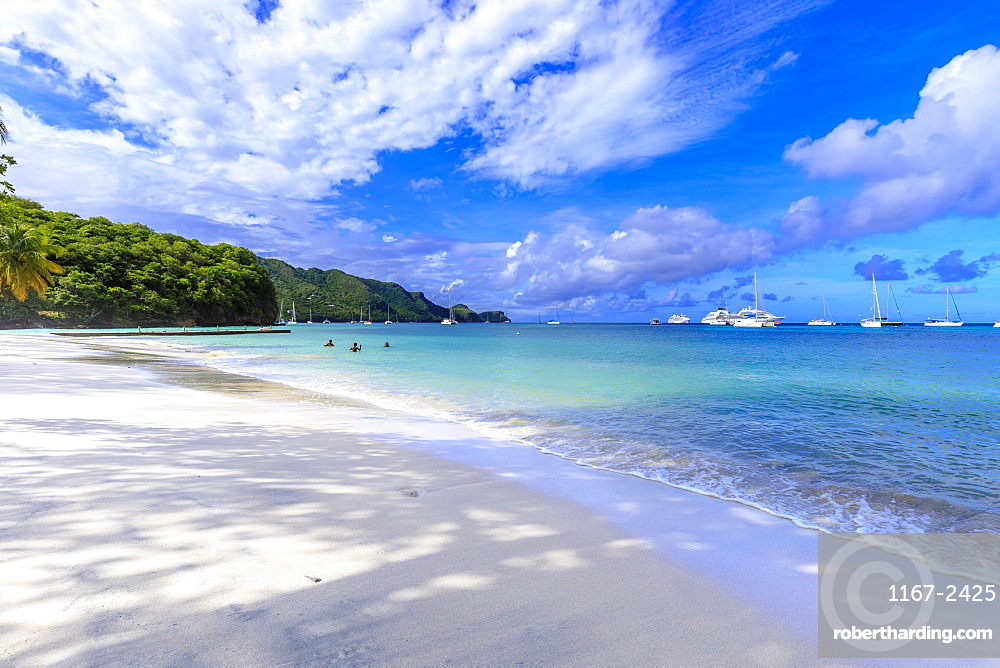 Quiet Caribbean, family play in turquoise sea, white sand beach, beautiful Port Elizabeth, Bequia, The Grenadines, St. Vincent and the Grenadines, Windward Islands, West Indies, Caribbean, Central America