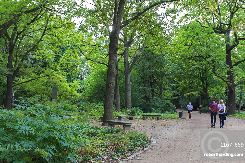 Running and strolling amongst the trees on an autumn evening in Tiergarten Park, Berlin, Germany, Europe
