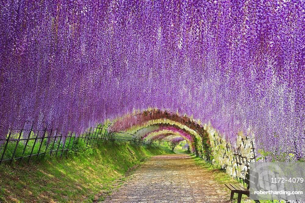 Fukuoka Prefecture, Japan