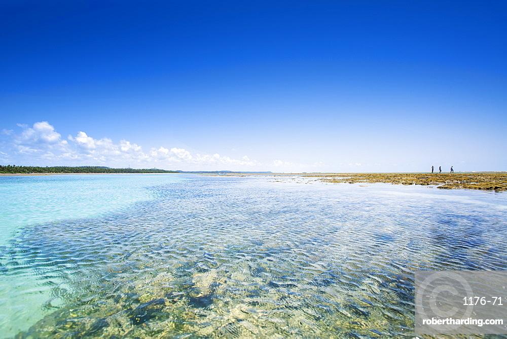 Patacho Beach, Sao Miguel dos Milagres, Alagoas, Brazil, South America