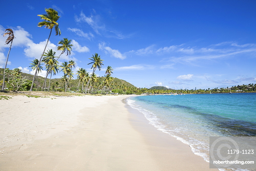 The long beach surrounded by palm trees and the Caribbean Sea, Morris Bay, Antigua and Barbuda, Leeward Islands, West Indies, Caribbean, Central America