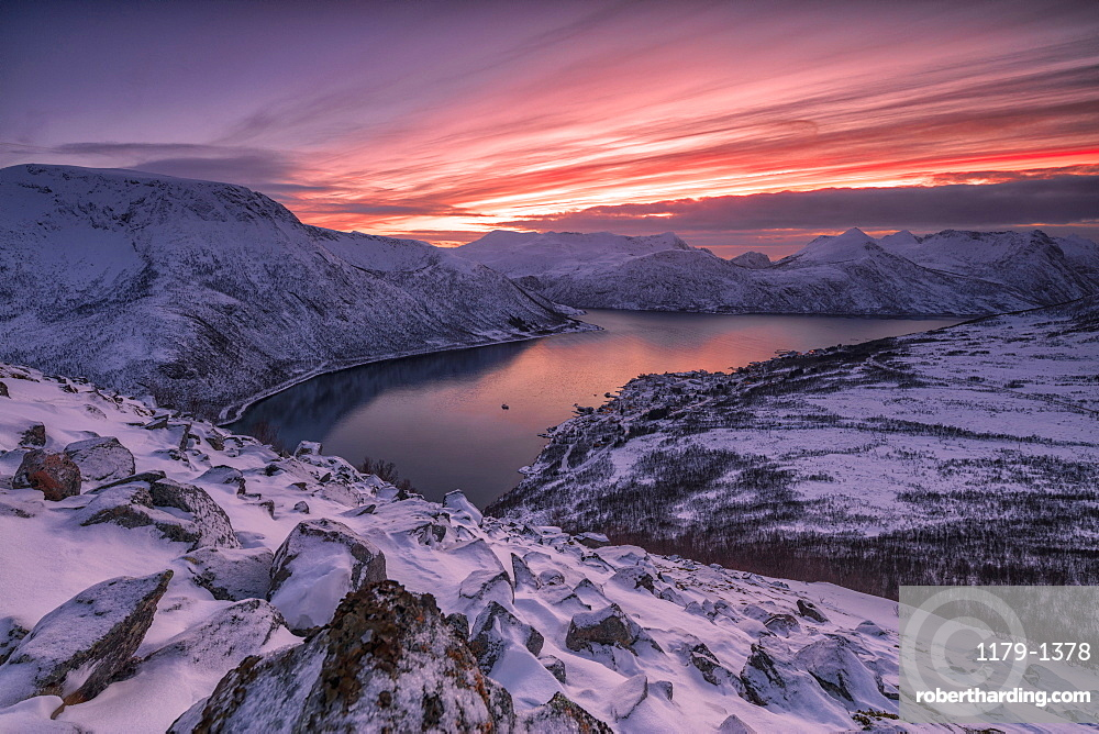 The frozen sea surrounded by snow framed by pink clouds, Arctic, Norway, Scandinavia, Europe