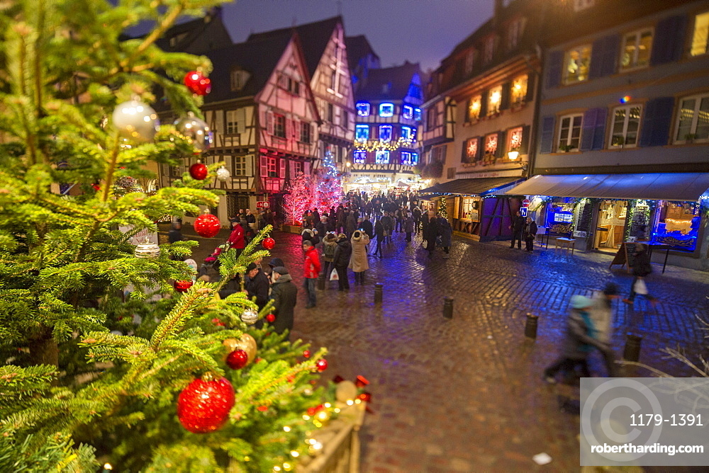 Colourful lights on Christmas trees and ornaments at dusk, Colmar, Haut-Rhin department, Alsace, France, Europe