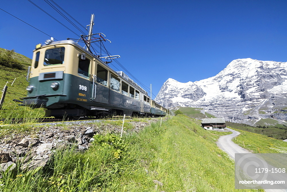 The Wengernalpbahn rack railway runs across meadows and snowy peaks, Wengen, Bernese Oberland, Canton of Bern, Switzerland, Europe
