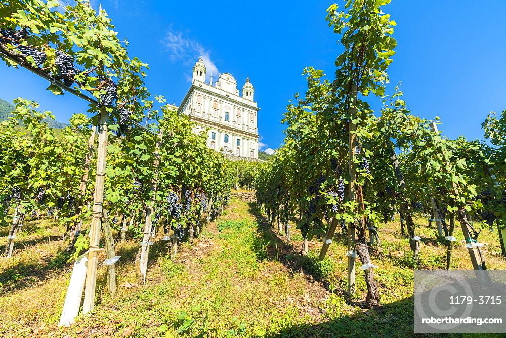Sanctuary Santa Casa di Loreto surrounded by vineyards, Tresivio, Sondrio province, Valtellina, Lombardy, Italy, Europe