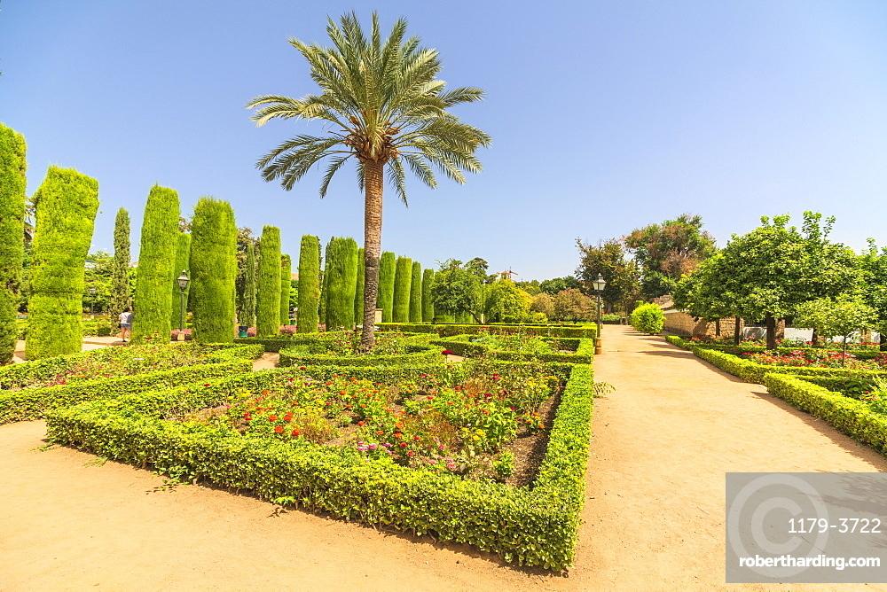 Palm trees and hedges, Jardines del Alcazar, ornamental gardens of Alcazar de los Reyes Cristianos, Cordoba, UNESCO World Heritage Site, Andalusia, Spain, Europe