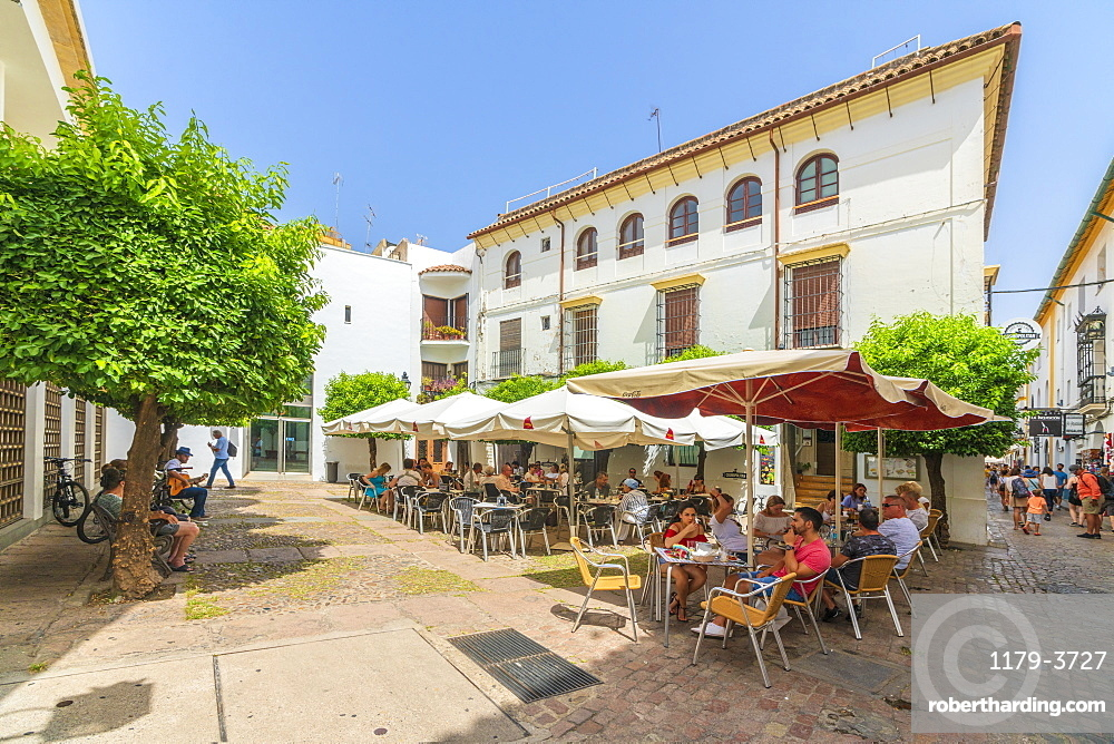 Tourists having lunch in a traditional restaurant of the old town, Cordoba, Andalusia, Spain, Europe