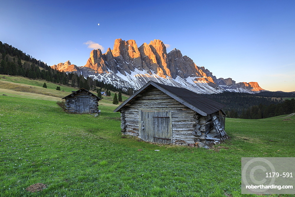 The group of Odle views from Gampen Malga at dawn, Funes Valley, Dolomites, South Tyrol, Italy, Europe