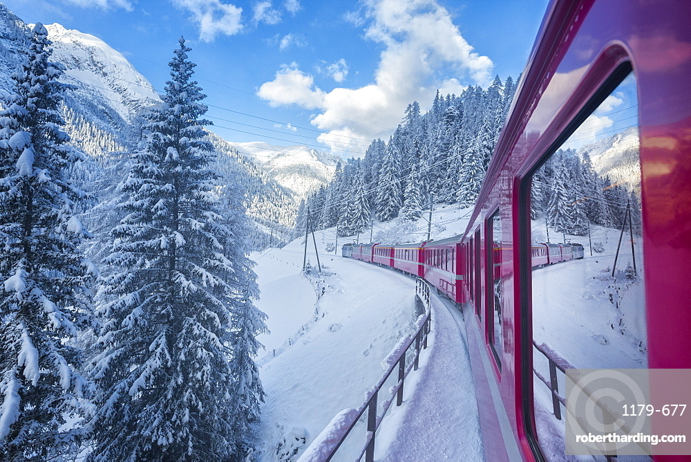 Bernina Express passes through the snowy woods, Filisur, Canton of Grisons (Graubunden), Switzerland, Europe