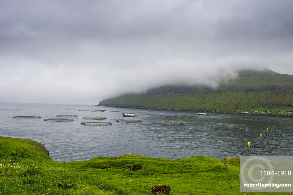 Fish farm in Estuyroy, Faroe Islands, Denmark, Europe