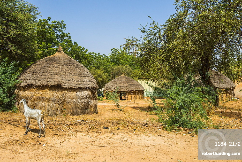 Traditional huts in the National Museum, Niamey, Niger, Africa