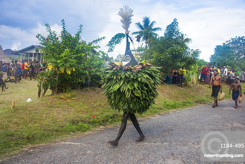 Traditional masked man at a Taboo death ceremony, East New Britain, Papua New Guinea, Pacific