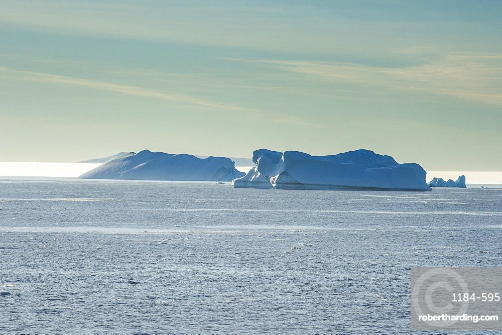 Icebergs floating in Hope Bay, Antarctica, Polar Regions