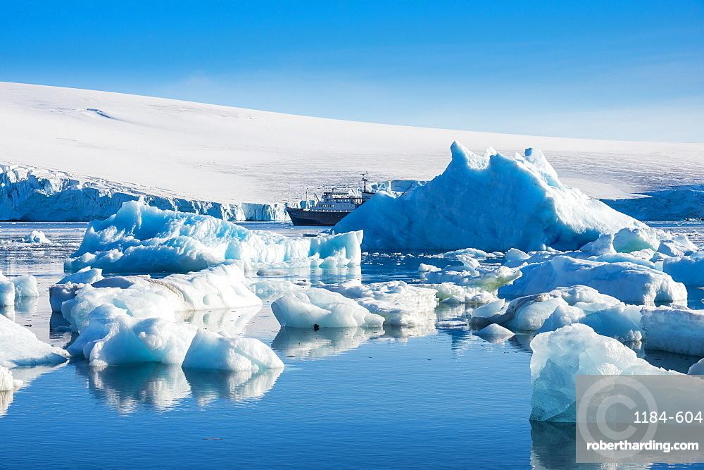 Beautiful little icebergs, Hope Bay, Antarctica, Polar Regions