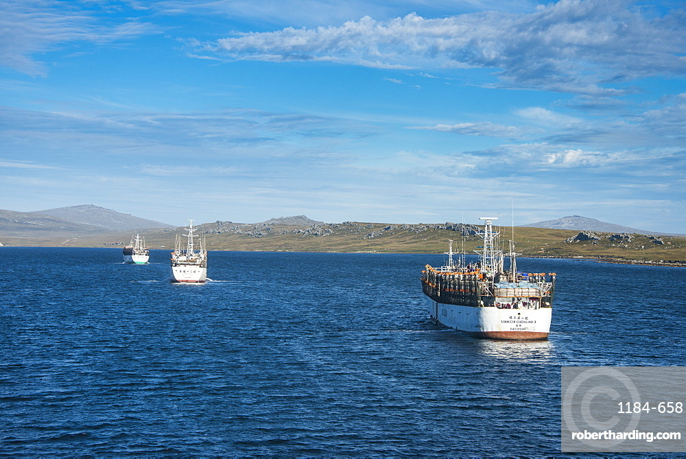 Chinese squid trawler in Stanley, capital of the Falkland Islands, South America