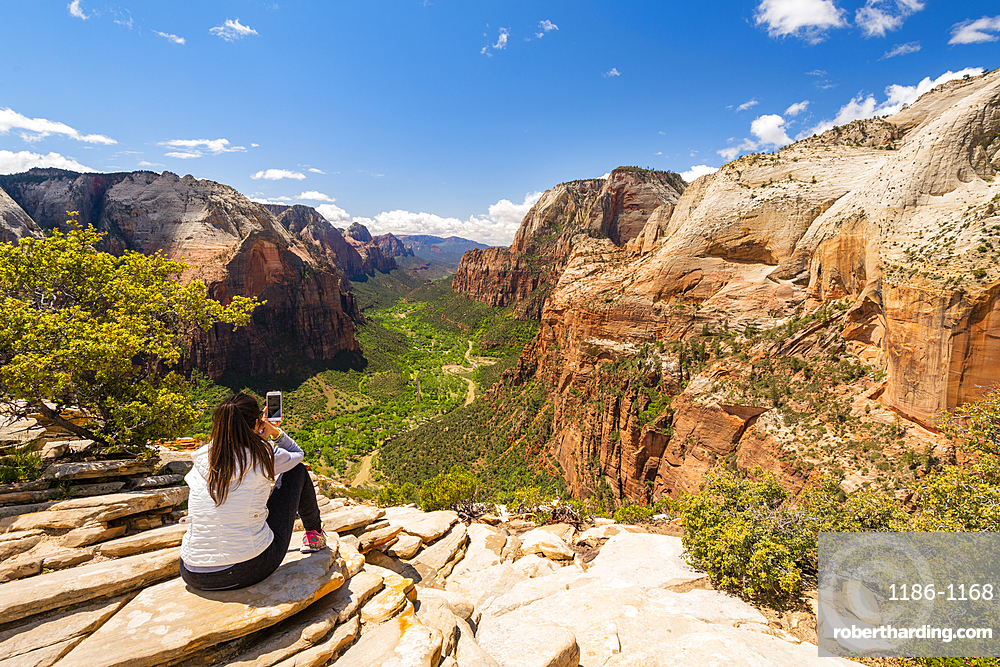 Enjoying the view from Angels Landing, Zion National Park, Utah, United States of America, North America