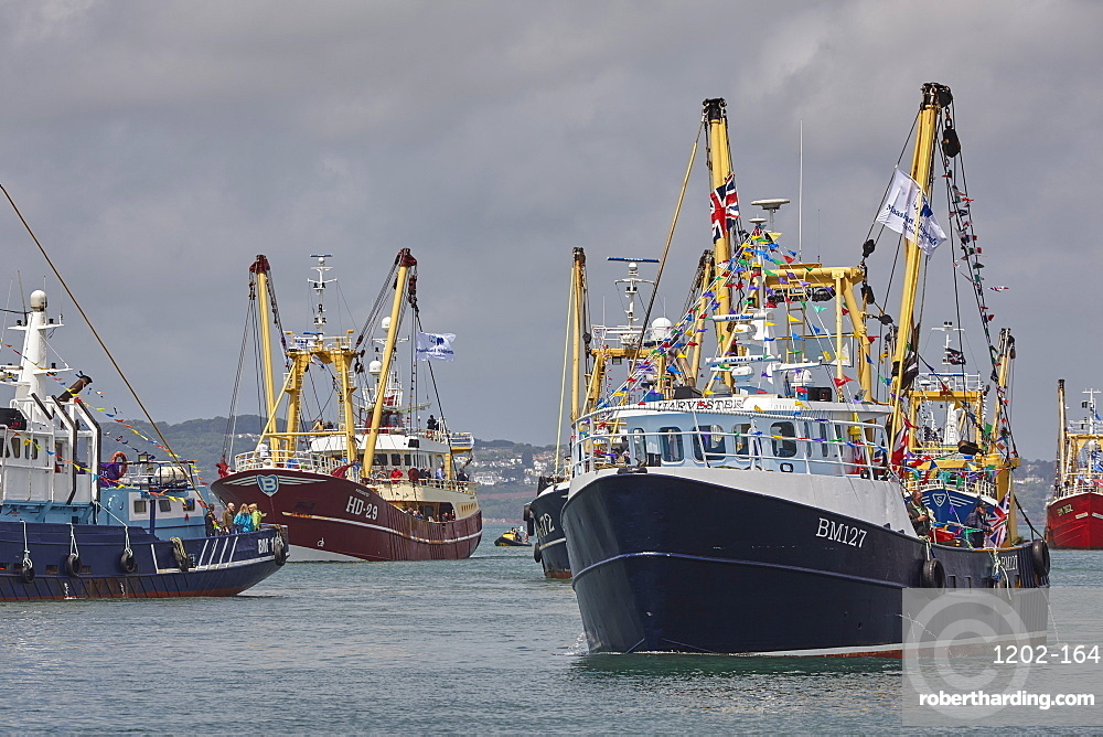 Trawlers in the annual trawler race, off Brixham, in Torbay, Devon, England, United Kingdom, Europe