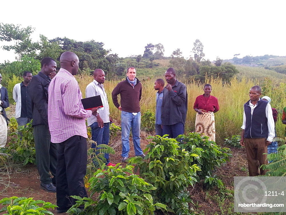 Chole Co-operative fields, Malawi, Africa