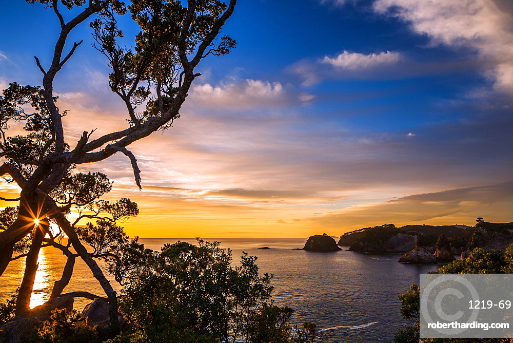 Sunrise along the rugged, lush Coromandel Peninsula on the eastern side of North Island, Waikato, New Zealand, Pacific
