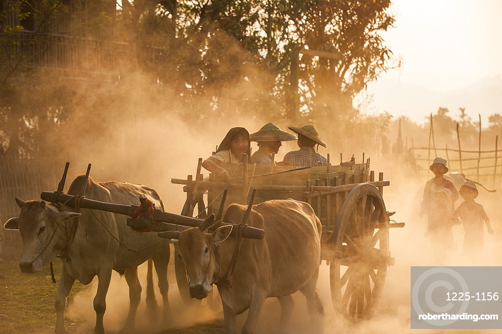 A bull cart kicks up a cloud of dust on the road to Indawgyi Lake, Kachin State, Myanmar (Burma), Asia
