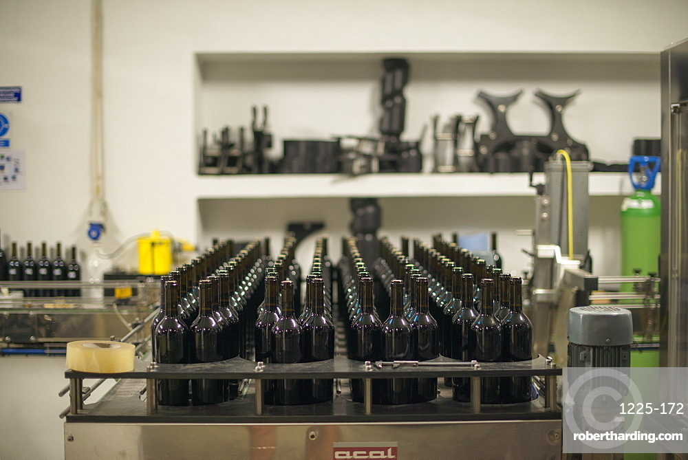 Douro wine being bottled at a winery in the Alto Douro region of Portugal, Europe