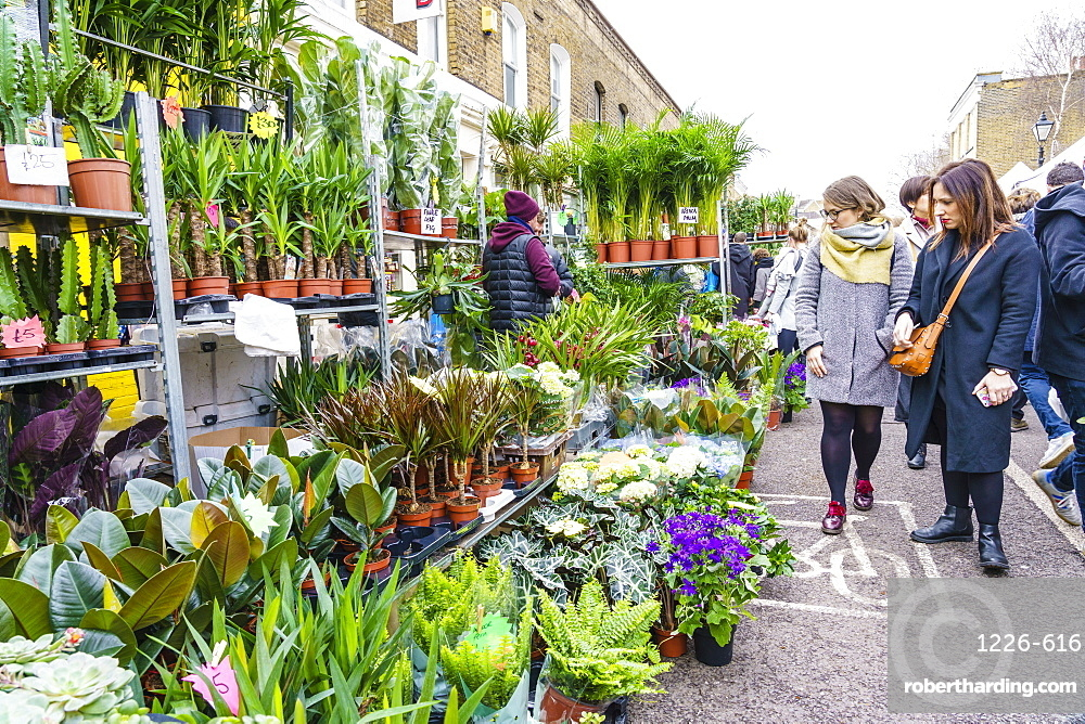 Columbia Road Flower Market A Stock Photo