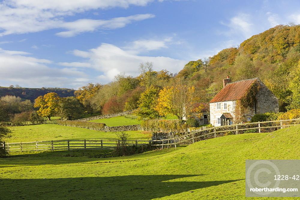 Autumn at Rievaulx Abbey village near Helmsley in North Yorkshire, Yorkshire, England, United Kingdom, Europe