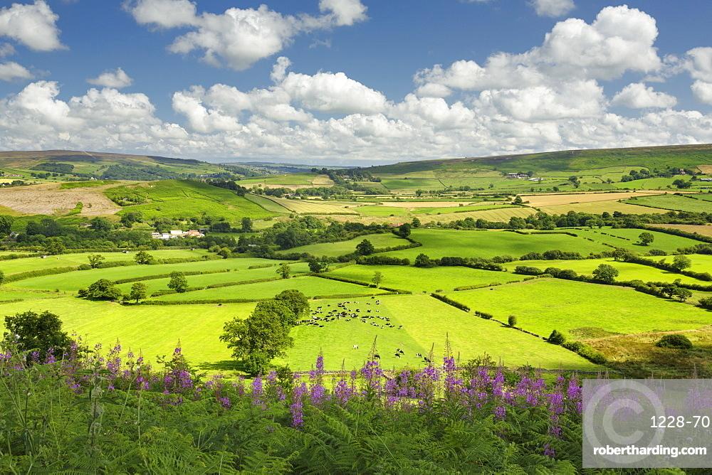 Castleton village, The North Yorkshire Moors National Park, Yorkshire, England, United Kingdom, Europe