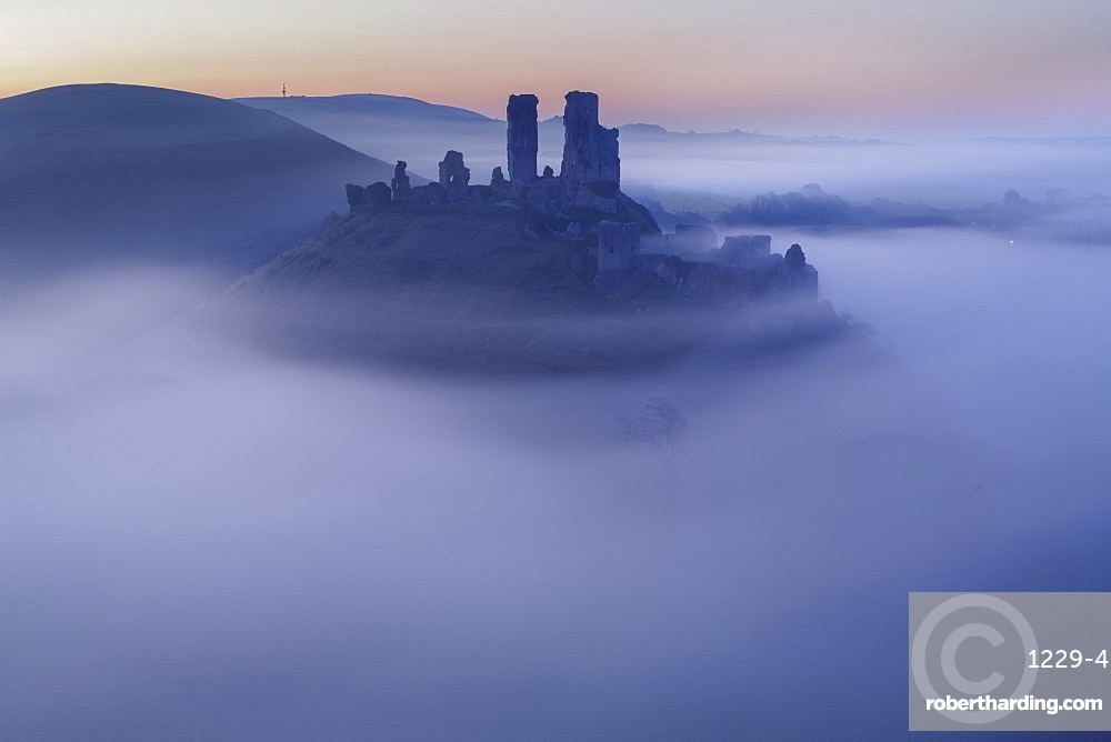 The ruins of Corfe Castle emerging from the mist before dawn on a spring morning, Corfe, Dorset, England, United Kingdom, Europe