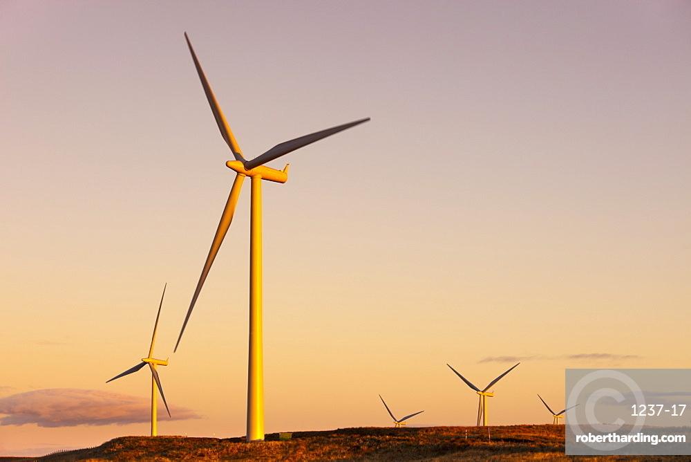Wind turbines at sunset, Whitelee Wind Farm, East Renfrewshire, Scotland, United Kingdom, Europe