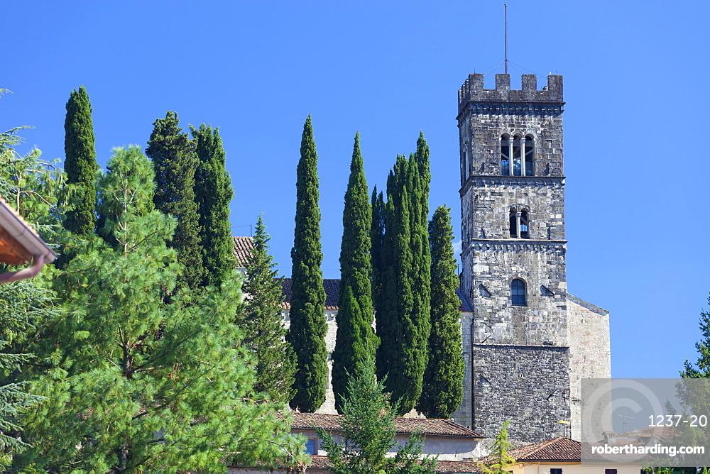 The Duomo of San Frediano, Barga, Tuscany, Italy, Europe