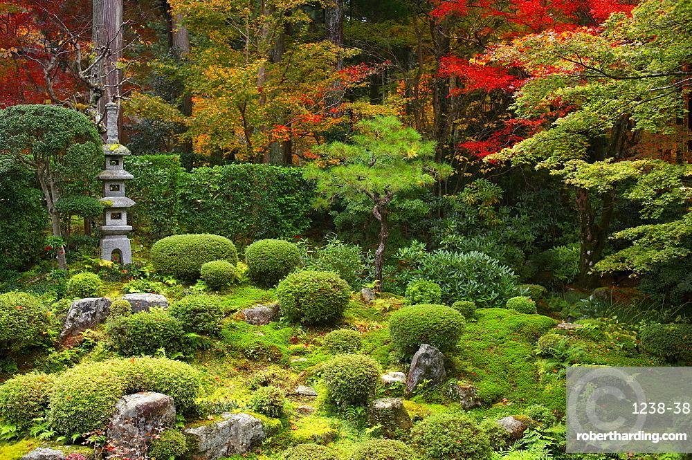 Zen garden in autumn, Sanzen-in Temple, Kyoto, Japan, Asia