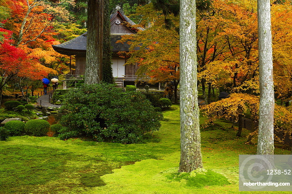 Autumn colours in Sanzen-in Temple moss garden, Ohara valley, Kyoto, Japan, Asia